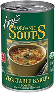 Best amy's vegetable barley soup Reviews