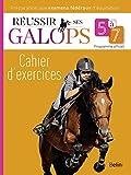 Réussir ses Galops 5 à 7 - Cahier d'exercices