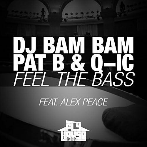 DJ Bam Bam, Pat B & Q-Ic