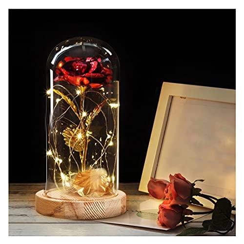 Geburtstagsgeschenk für Frauen,Die Schöne und Das Biest Rose Geschenk Kit,Rose im Glas,Ewige Rose Romantische Geschenke zum Geburtstag,Weihnachtstag,Hochzeitstag,Jahrestag,Muttertag,Valentinstag