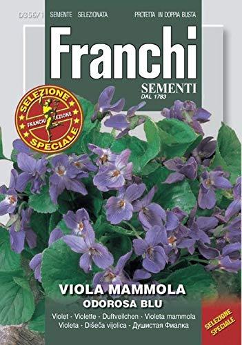 SEMENTI DA FIORE SELEZIONE SPECIALE FRANCHI IN BUSTINA DOPPIA PROTEZIONE (VIOLA MAMMOLA ODOROSA BLU)