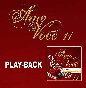 Amo Você Vol. 14 (Playback)