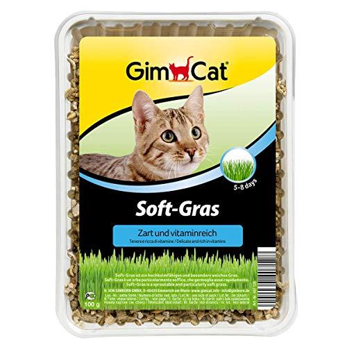 H. von Gimborn GmbH -  GimCat Soft-Gras -