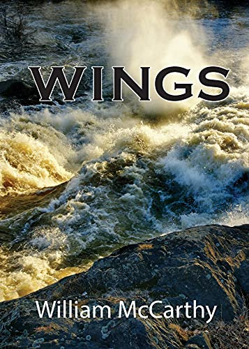 Wings (English Edition)