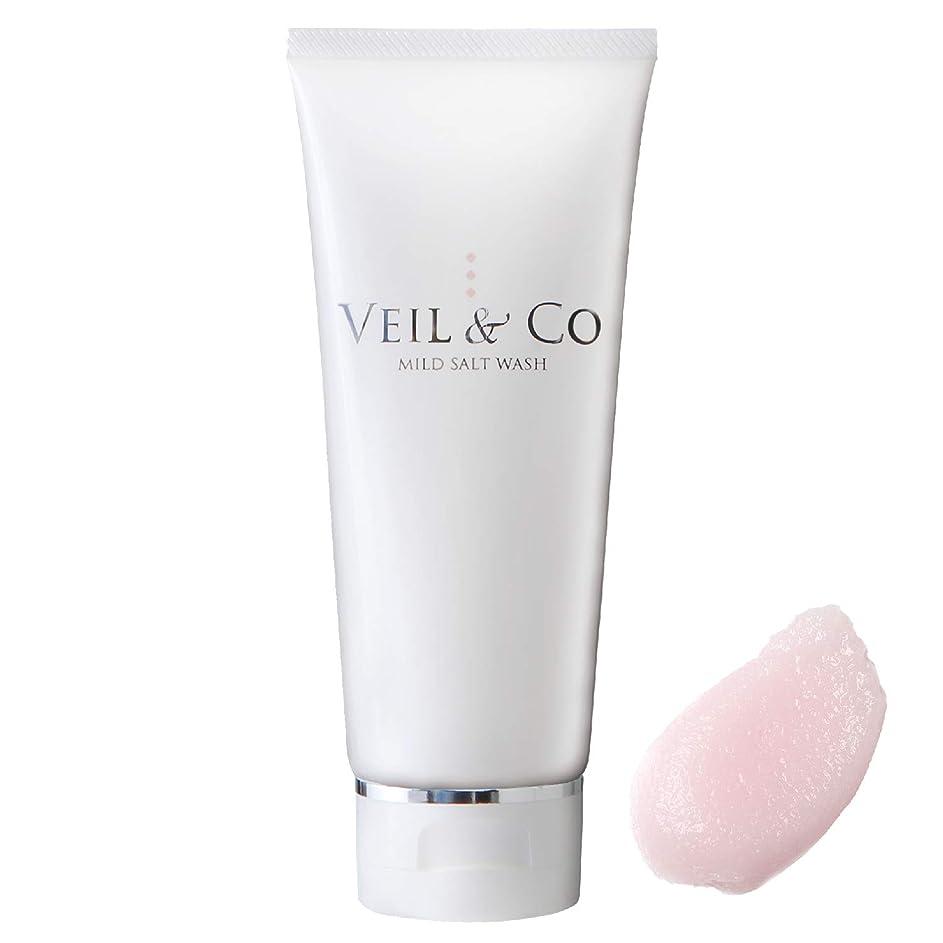 仕様ロッド同化する【VEIL&Co】ベールアンドコー 毛穴専用マイルドソルトウォッシュ(洗顔料) 150g