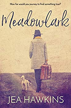 Meadowlark by [Jea Hawkins]