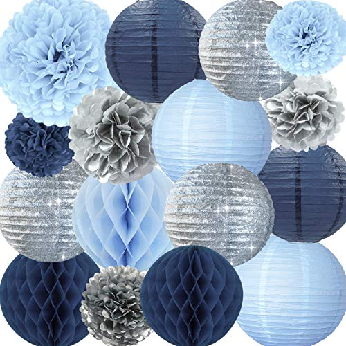 NICROLANDEE Frozen Theme Winter Wonderland Party Decoration - 16 Pcs Silver Glitter Paper Lanterns Honeycomb Balls Tissue Pom Poms for Kids Birthday Party Supplies Bridal Shower Wedding Decor