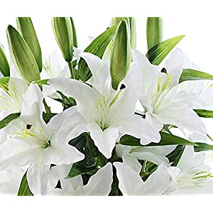 Bonwete Artificial Fake Flowers, 5Pcs Lily Outdoor UV Resistant Greenery Shrubs Plants Indoor Outside Hanging Planter Home Garden Decoration