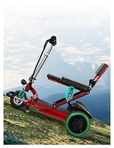 Scooter de movilidad de 3 ruedas - Scooters de ayuda a la movilidad ligeros y motorizados...