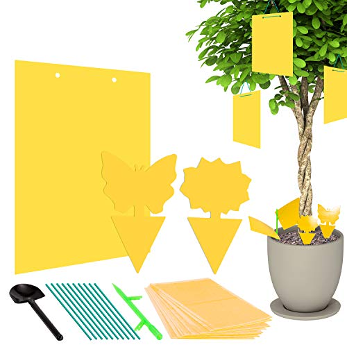 Whaline 30 Pack Sticky Fly Trap Yellow Dual-Sided Gnat Trap Butterfly...
