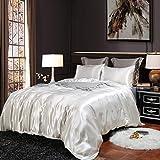 White Bedding Silk Like Satin Duvet Cover Set Silver White Quilt Cover Silky Microfiber Boys Girls Bedding Sets Queen (90x90) 1 Duvet Cover 2 Pillowcases (White, Queen)