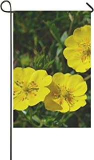 yyone Home Decorative Outdoor Double Sided Alps Brown Flower Blossom Bloom Yellow Garden Flag,House Yard Flag,Garden Yard ...