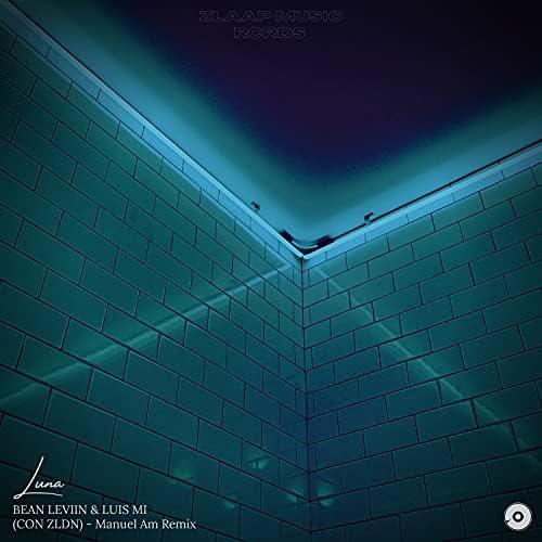 Bean Leviin & Luis MI feat. ZLDN
