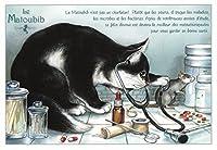 フランス製 キャットポストカード (Le Matoubib) CPK111