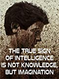 The True Sign of Intelligence is not Knowledge, but Imagination