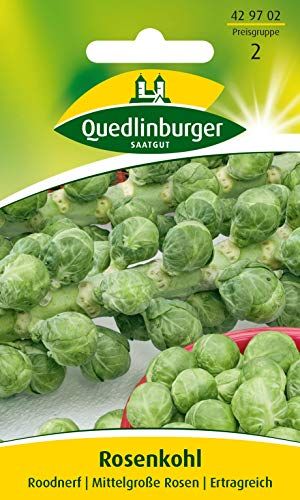 Rosenkohl, Roodnerf Quedlinburger Saatgut Samen 429702