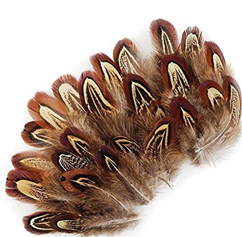 ERGEOB® Naturaleza Decoración Gallo Pluma Pluma de faisán 50 Piezas, de 4-7 cm de Largo, Ideal para Trajes, Sombreros, artesanías, decoración del hogar, Bricolaje, etc.