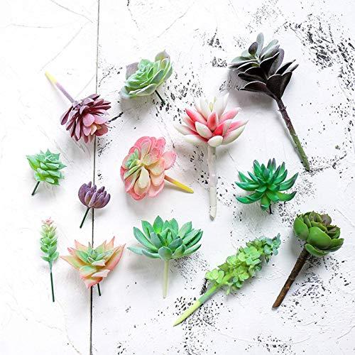 BBGSFDC Plantas suculentas artificiales, 13 piezas mini de imitación suculentas decoraciones de cactus falsos para decoración de fiestas y oficinas