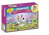 Playmobil Toy Advent Calendars