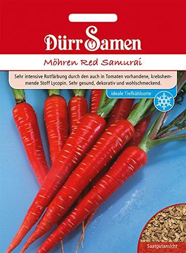 Möhre Red Samurai | Möhrensamen von Dürr Samen