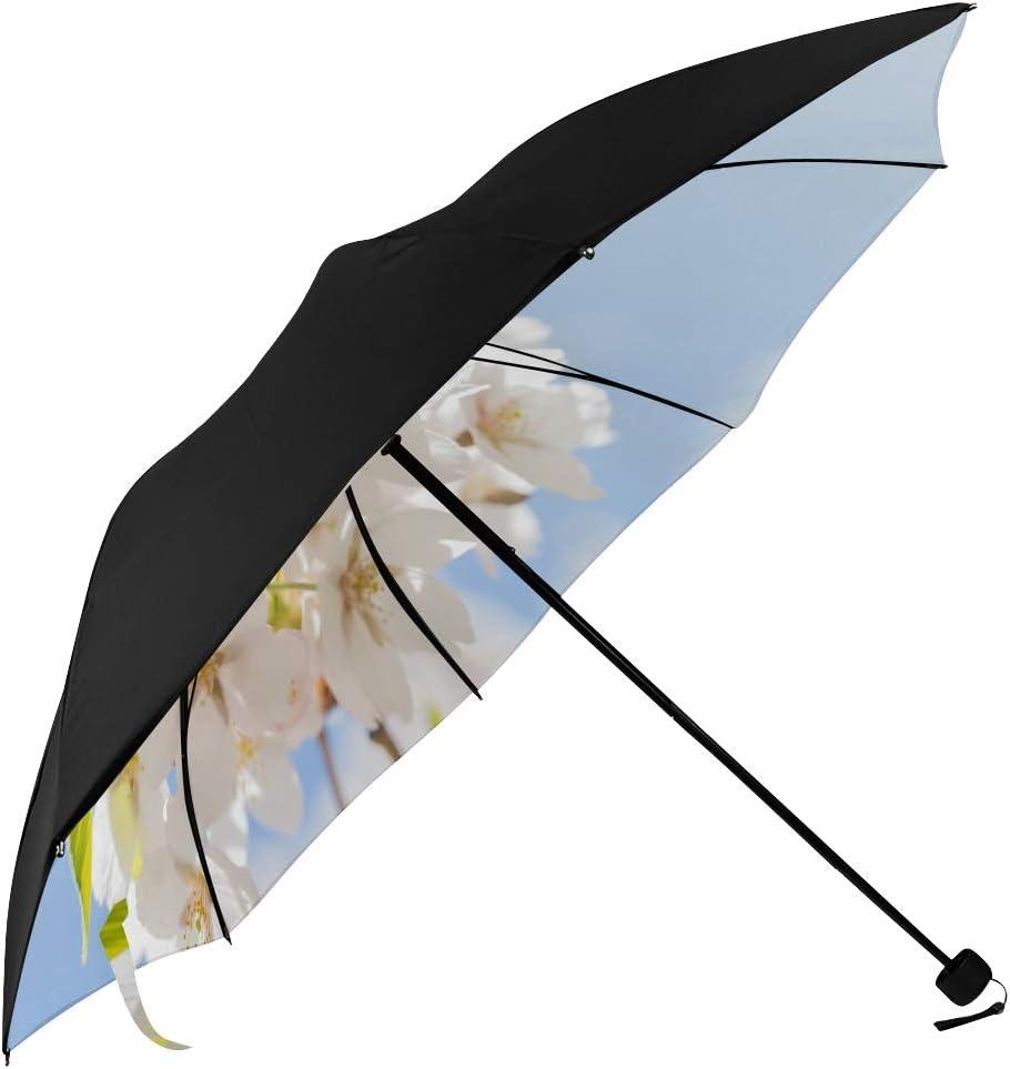 Pretty Travel Umbrella Spring White Super sale Ranking TOP3 Flower Unders Blossom Cherry