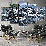 DBFHC Art Cuadros En Lienzo Orca Stration Killer Whale Océano Decoracion De Pared 5 Piezas Modernos Mural Fotos para Salon Dormitori Baño Comedor 150X100Cm