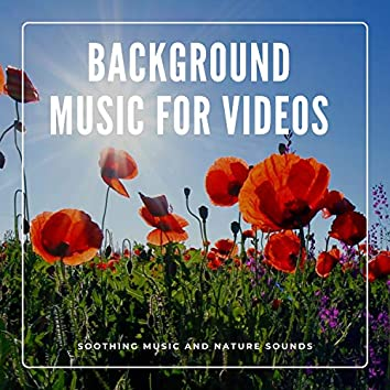 Background Music for Videos - Soothing Music and Nature Sounds
