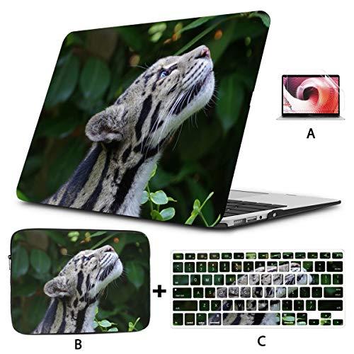 Estuche Mac Clouded Leopard Wild Cat Hocico Manchado Macbook Air Estuches Hard Shell Mac Air 11'/ 13' Pro 13'/ 15' / 16'con Funda para portátil para Macbook Versión 2008-2020