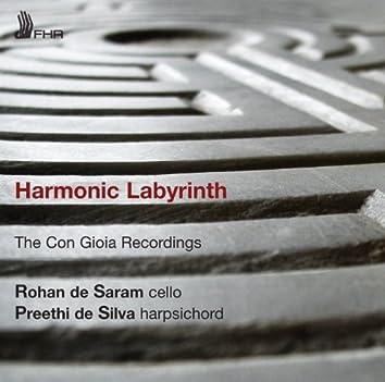 Harmonic Labyrinth