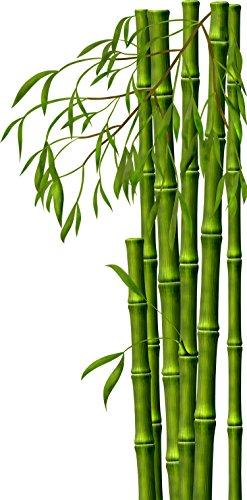 wandmotiv24 Wandsticker Bambus S - klein 30x61cm Wand-Aufkleber, Sticker, Schrank-Bild, Wandbild WS00000146
