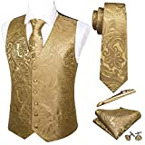 Barry.Wang Formal Men Dress Vest Matched Paisley Tie Set Suit Waistcoat Wedding 5PCS Gold 2XL-Large