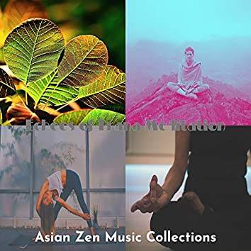 Echoes of Prana Meditation