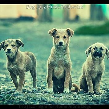 Trio Jazz - Bgm for Home Alone Dogs