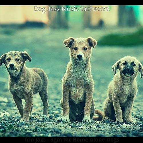 Dog Jazz Music Orchestra