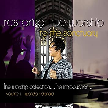 The Worship Collection: The Introduction, Vol. 1: (Restoring True Worship to the Sanctuary)