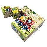 PROW 9 Piezas Madera Cubos Puzzle Transportador Puzzle Revelación Juguetes Bloques de construcción Estimular el niño Imaginación y Creatividad para niño Niño y niña