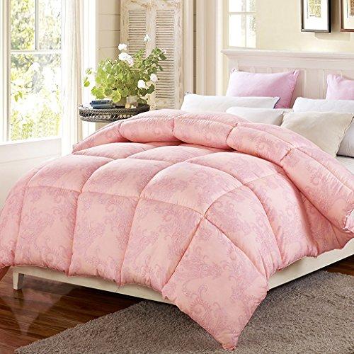 MMM Décolletage d'hiver plus épais Conservez le couvre-lit chaud au coeur de la chambre des dortoirs d'étudiants Double individuel La literie de printemps et d'automne (taille : 200 * 230cm(2.5kg))