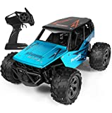 RC Cars, 1:18 All Terrain Remote Control Cars, 2.4Ghz High-Speed Off Road RC Racing Cars, 2WD Remote Control Monster Trucks, RC Rock Crawler Toy Gifts Kids Toy Cars, Best Gift for Kids and Adults