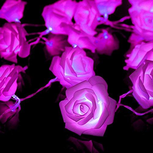 AiSi 3m 20 LED Boules Chaîne de Lumière en Forme de Rose avec Boîte de Batterie Decoration pour Cérémonie, Mariage, Noël Lumière Violet