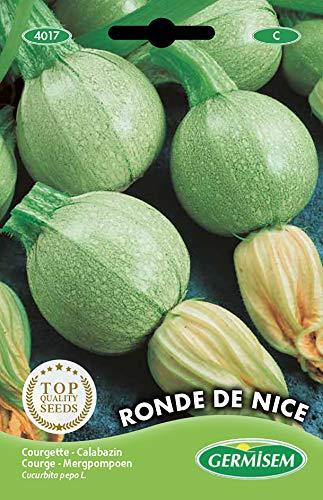 Germisem Ronde de Nice Semi di Zucchine 3 g