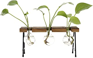 TiTa-Dong Hydroponic Plant Vases with Wooden Stand, Plant Glass Container Stand Glass Planter Bulb Vase Metal Rotating Hol...