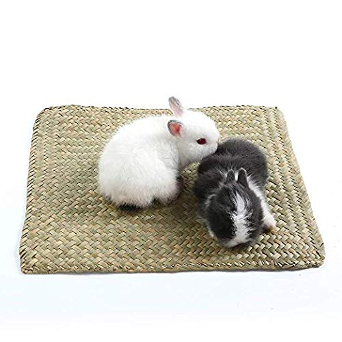 Niteangel 2-Pack of Soft Sea Grass Mats for Rabbit Bunny Guinea Pigs and Other Small Animals