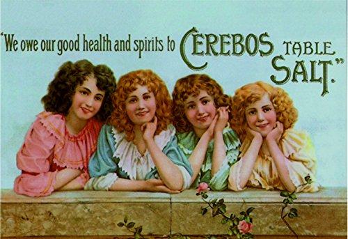 Ecool We danken onze goede gezondheid en geesten aan cerebos tafel zout retro shabby chic vintage stijl foto metalen muur plaque teken (280mm x 200mm)