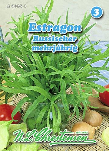 Estragon, Russischer mehrjährig N.L.Chrestensen Samen 490251-B