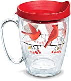 Tervis 1318407 Cardinals Insulated Tumbler with Wrap and Lid, 16 oz Mug - Tritan, Clear