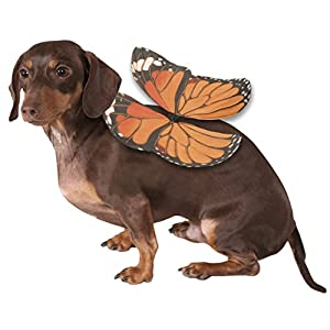 Rubies Costume Monarch Butterfly Wings Dog Costume