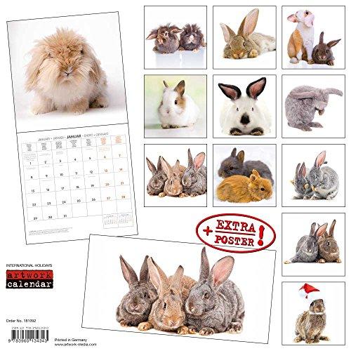 Kaninchen 2018: Kalender 2018 (Artwork Edition)