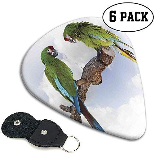 Gitaar plukt 6 stuks, twee papegaai Macaw op een tak pratende vogels slimme wezens van de natuur