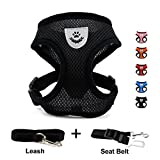 INVENHO Mesh Harness with Padded Vest for Puppy and Cats No Choke Design
