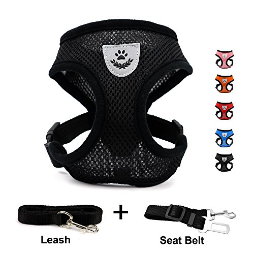 DogJog Dog Harness